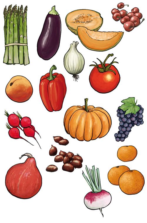 Comment dessiner des fruits - Dessiner un fruit ...